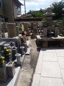 徳庵橋本墓地_10091