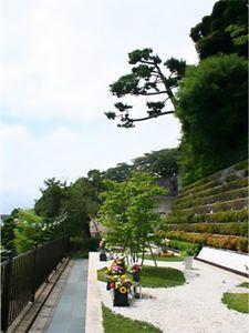 日蓮宗本山 池上大坊 本行寺 樹林墓地「そせい」_10436