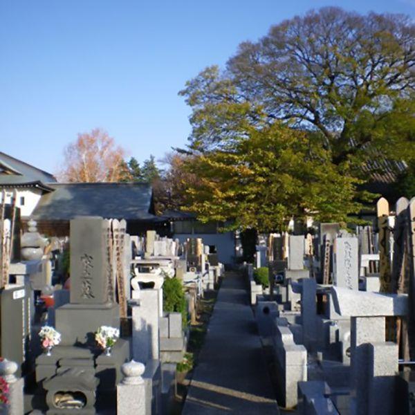 観蔵院墓苑_10517