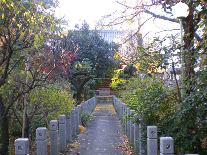 観蔵院墓苑_10555