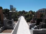 青山墓苑の白い参道