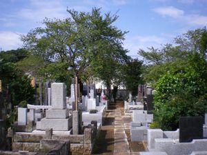 宗泰院墓苑_10596