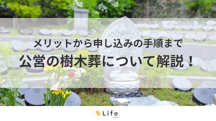 樹木葬は公営霊園でも運営している!利用者にうれしい4つのメリット