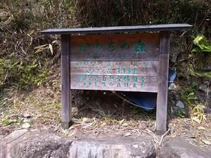 森のお墓「いのちの森」_10769