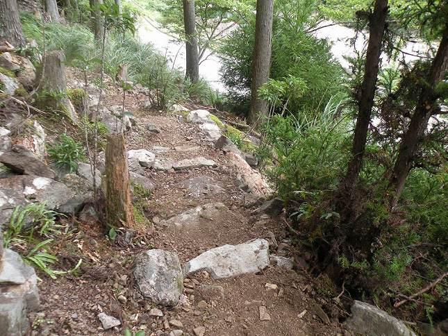 森のお墓「いのちの森」_10776