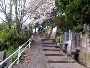 長崎市営 坂本国際墓地_10907