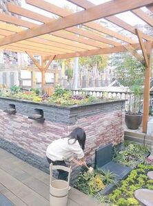恵光メモリアル 新宿浄苑 ペットと眠る樹木葬テッセラ_11424