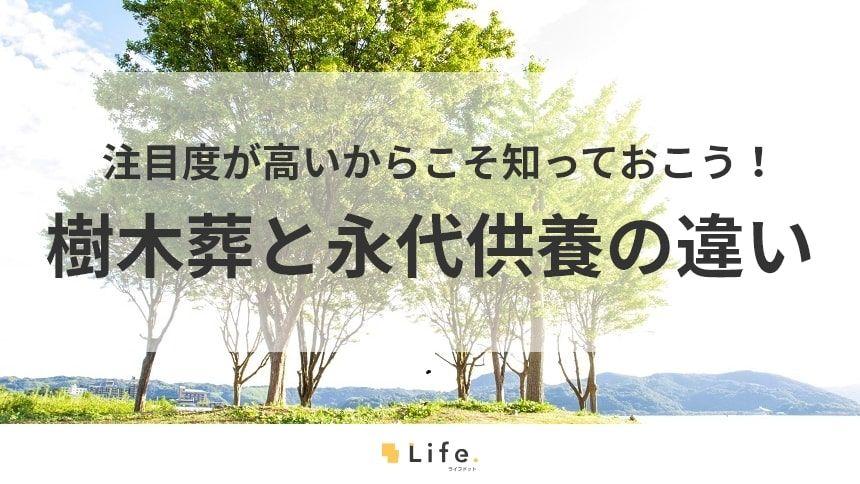 樹木葬と永代供養の違いは何?今注目されているワケ・注意点も解説!