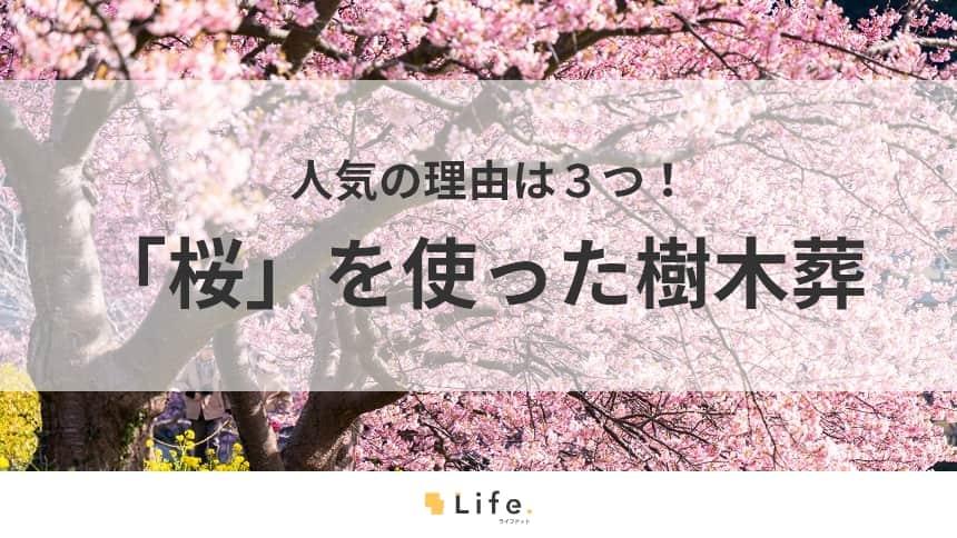 """樹木葬で""""桜""""が人気な理由は3つ!桜を使ったおすすめ霊園も紹介"""