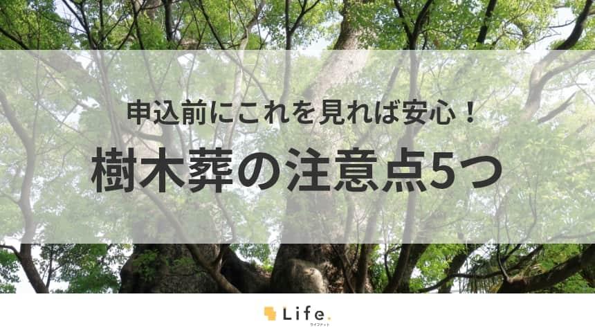 【樹木葬の注意点5つ】申込前にこれを見れば安心!納得したうえでお墓を決めよう