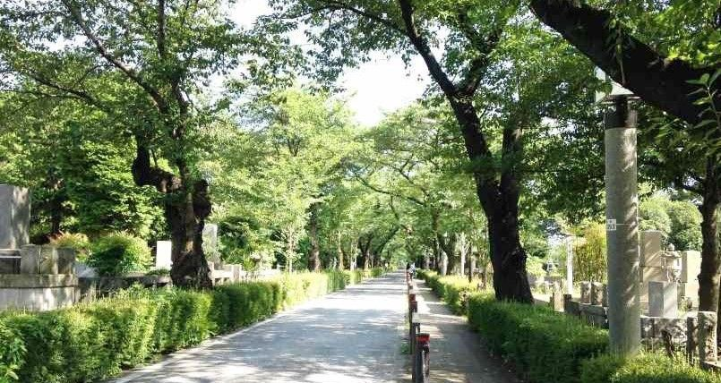 港区(新宿)のお墓・霊園・墓地