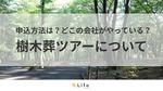 樹木葬ツアーに参加したい!申込方法やツアーを設けている会社も紹介