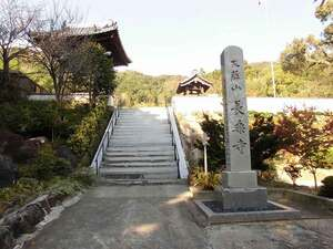 長楽寺霊園_12865
