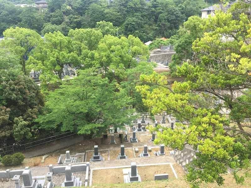 広島市営 三滝墓園_12935