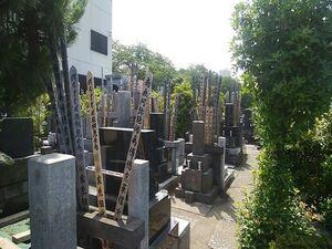 豊島染井樹木葬墓地_13296