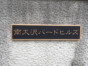 南大沢ハヤブサバレー_13319