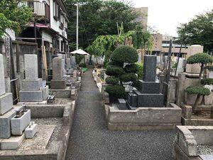 杉並堀ノ内樹木葬 「桜の庭園」_13496