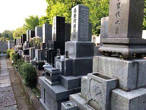 赤羽樹木葬墓地_13627
