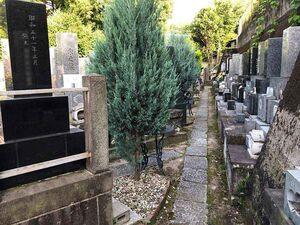 赤羽樹木葬墓地_13629