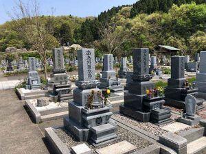 鉾ヶ崎墓地公園 しらゆりの杜_13799