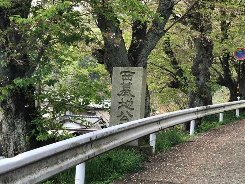 福井市営 西墓地公園_13885