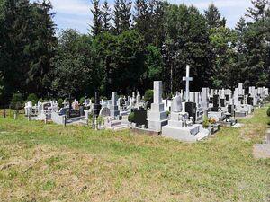 帯広市緑ケ丘墓地_14236