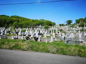 小樽市営 高島墓地_14268