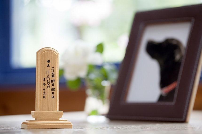 ペット用仏壇について!種類や供養法を紹介