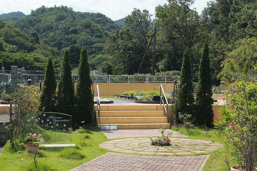 阪南小川渓メモリーズパーク 春の山桜