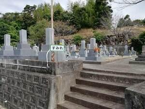 長慶寺の「すみれ」
