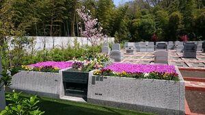 都筑まどか霊園のツツジが綺麗に植えられている墓域