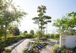 遍照寺 魚住庭苑の全景