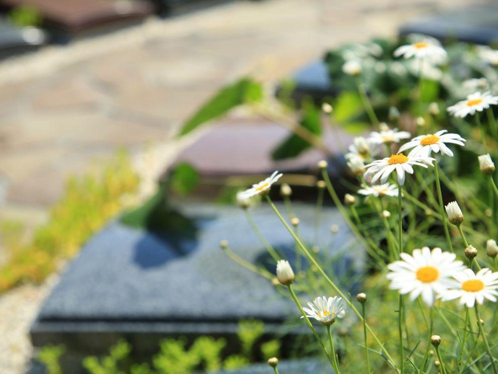 遍照寺 魚住庭苑 墓地の風景