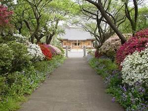 うめでら 東持寺霊園_15432