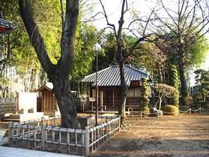 相頓寺墓苑_15476