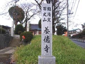 養徳寺_15641