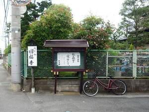 圓福寺_16341