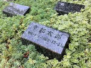 上京庭苑_16468