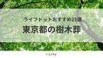 【東京 樹木葬】アイキャッチ画像