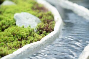 樹木葬「緑波」_16571