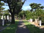 青山霊園の墓域にある道