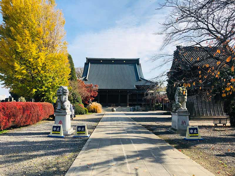 報国寺 のうこつぼ_16751