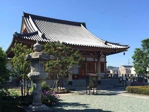 蓮光寺 のうこつぼ_16796