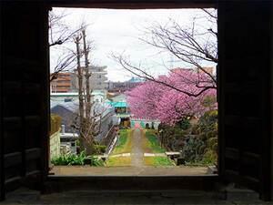 西方寺 のうこつぼ_17015