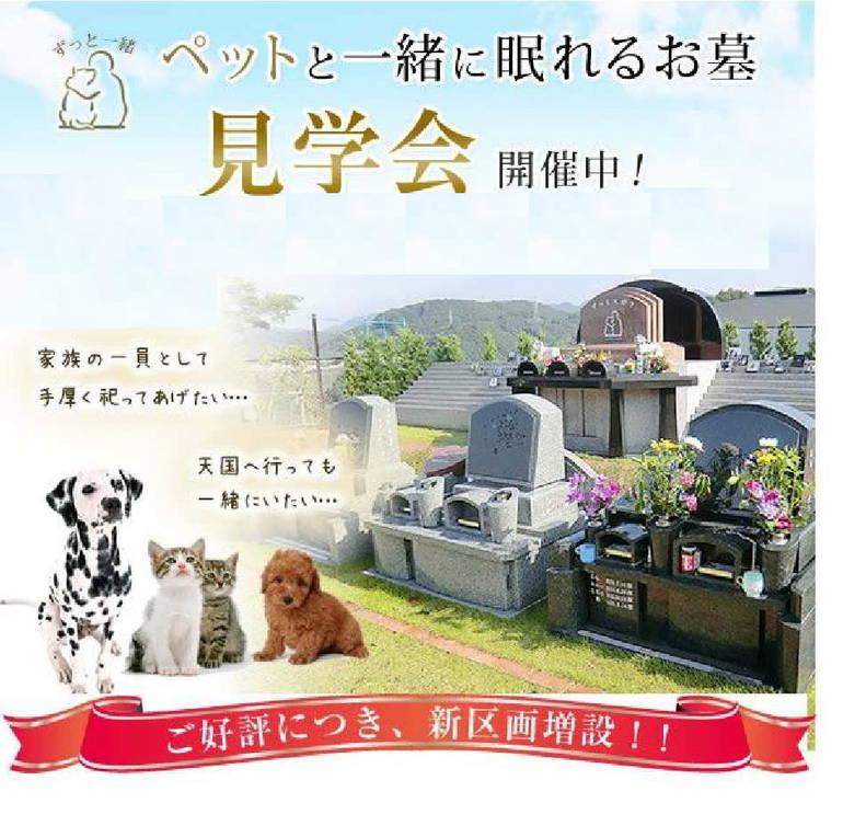 北摂池田メモリアルパークのペットと一緒に眠れることが書かれたパンフレット