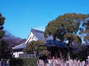 大寶寺 のうこつぼ_17237