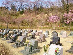 太田市営 八王子山公園墓地_17664