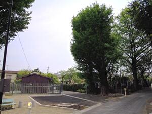 慈妙苑墓地_18091