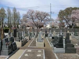桜上水 みたま墓苑_18272