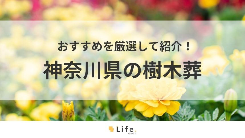 【2020年版】神奈川県の樹木葬おすすめ13選!エリア別・予算重視紹介